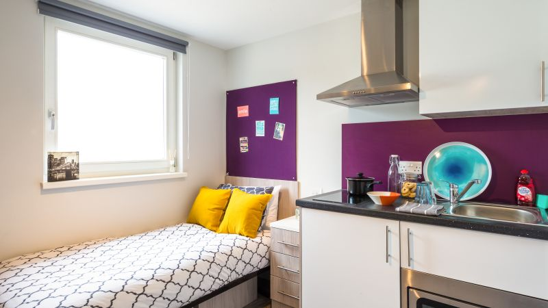 University Of Sussex Accommodation Student Room