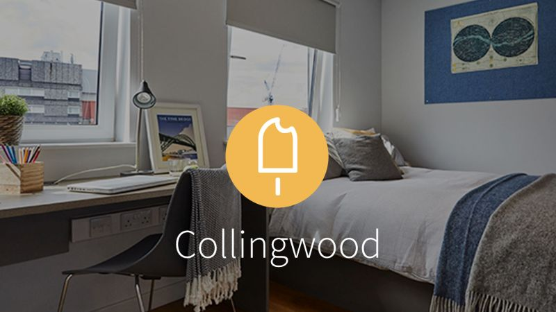 Stay with iQ Student Accommodation at Collingwood this summer